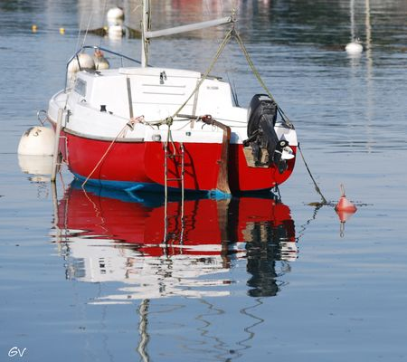 reflets dans le port de Ploumanach 22