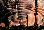 reflets dans un oeil d' or