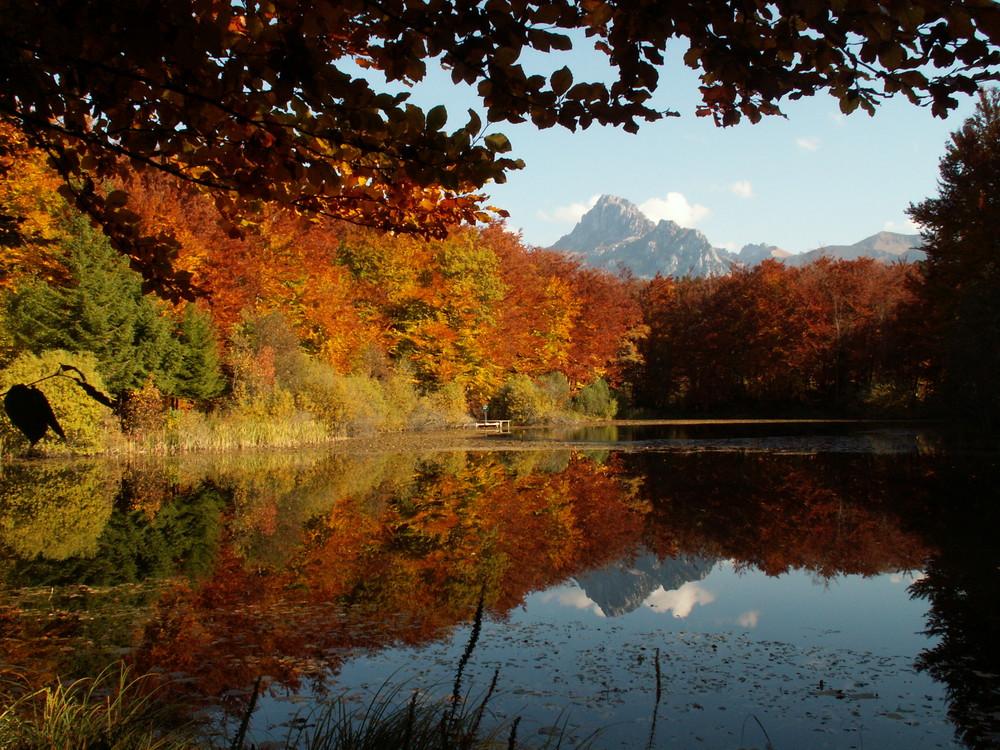 Reflets d'argent sur le Lac de la Beunaz à Bernex 74