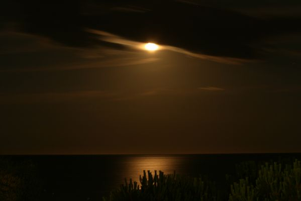 Reflets de lune sur la Méditerranée
