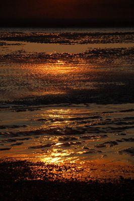Reflets d'or en Baie de Somme