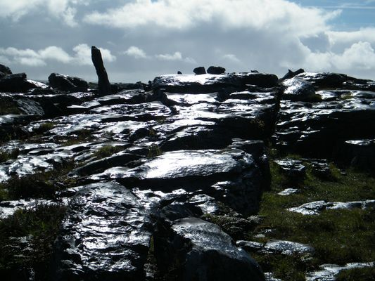 Reflets du Burren