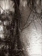reflets sur le lac
