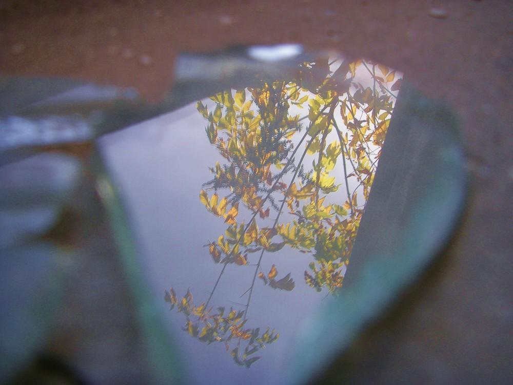 reflexion in scherbe