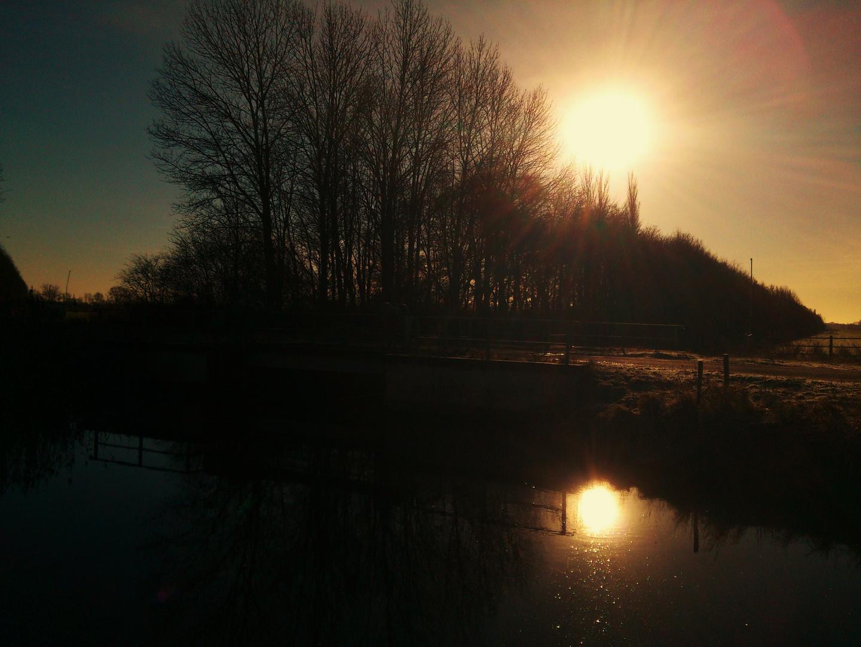 Reflexionen im Wasser II
