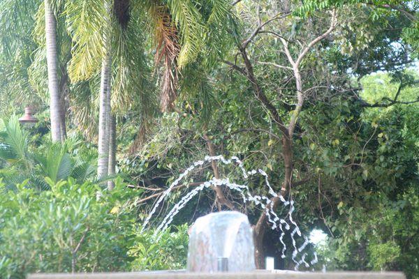 REGARD... ou la légèreté de l'eau