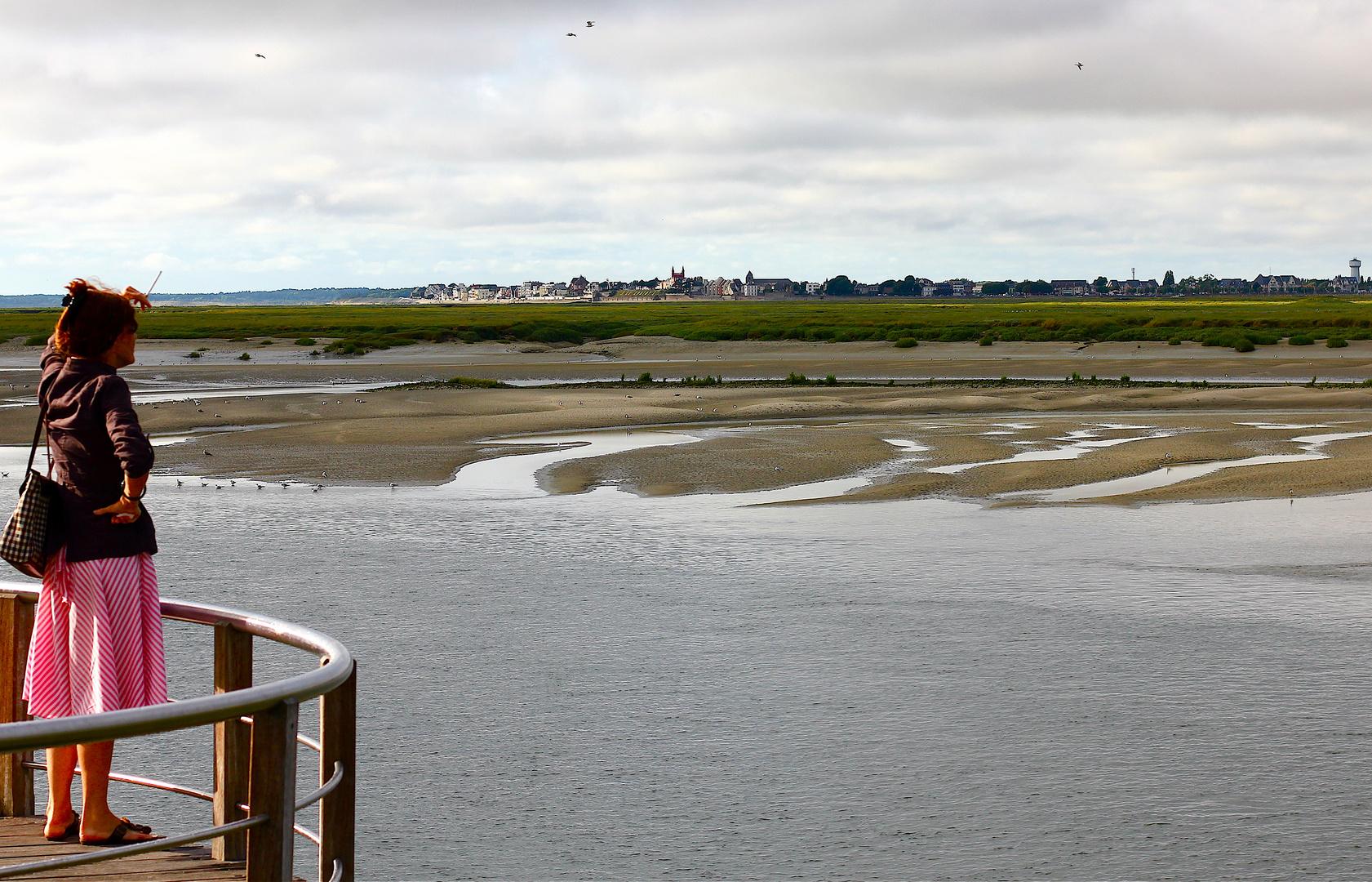 Regard sur l'embouchure du Crotoy .