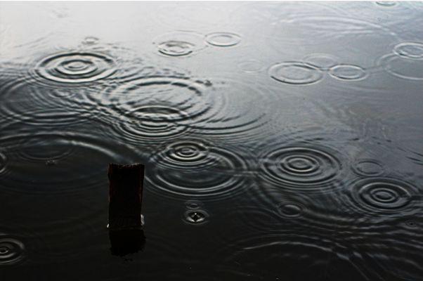 -regen-