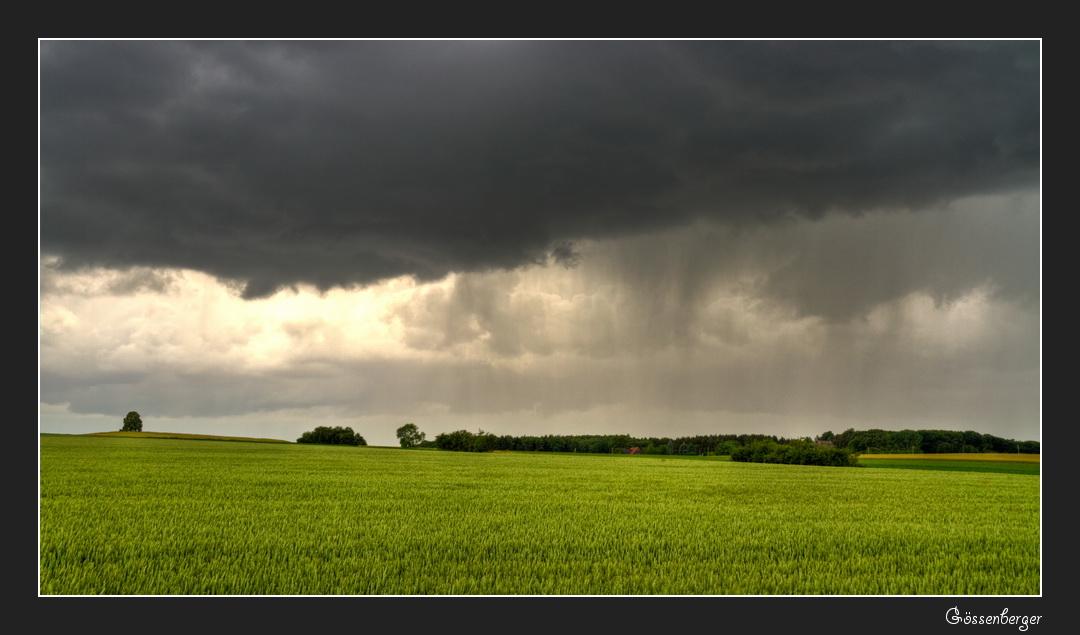 Regen am Nachmittag 2