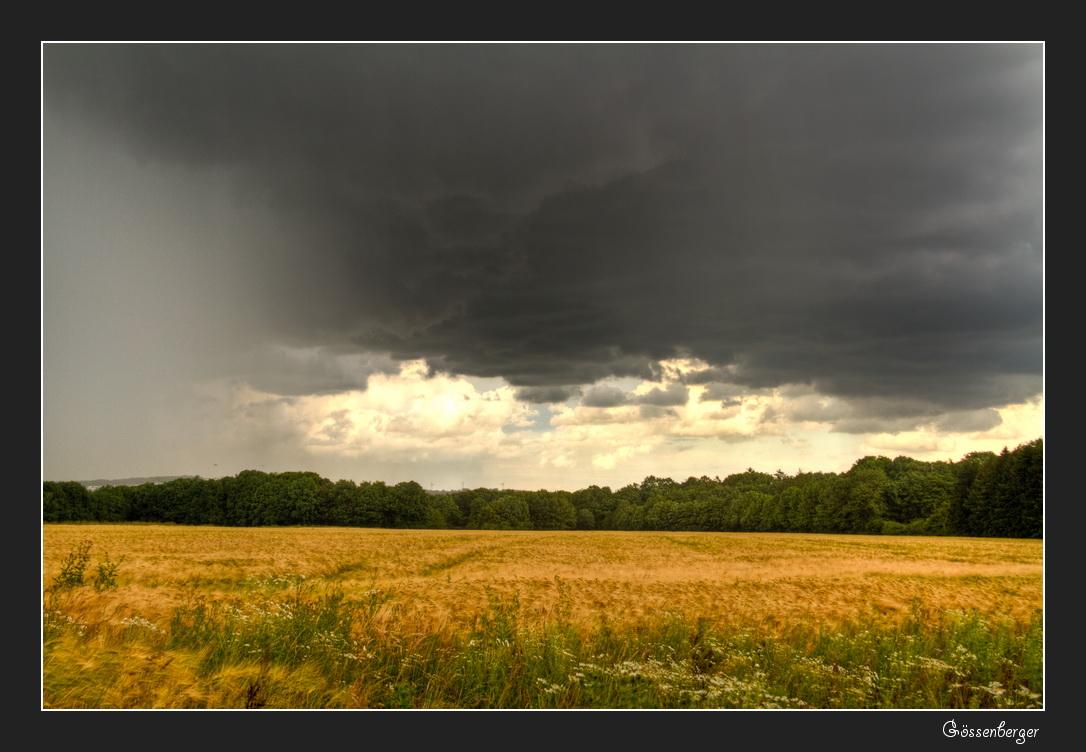 Regen am Nachmittag 3