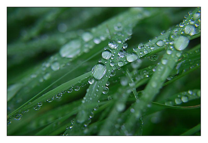 Regen fiel auf die Welt...