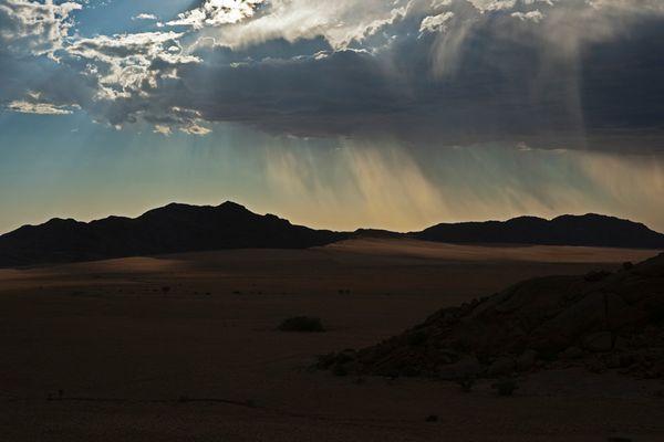 Regen in der Namib bei Sonnenuntergang