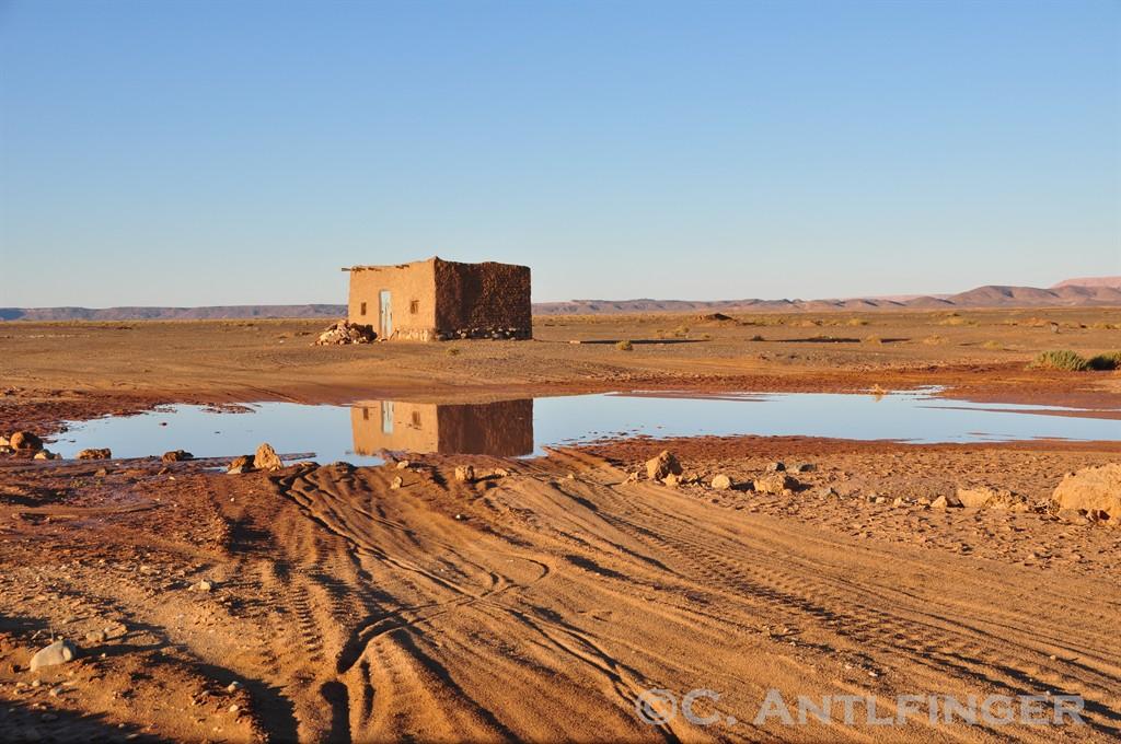 Regen in der Sahara