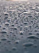 Regen-Perlen