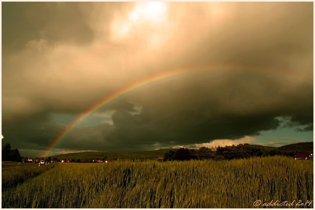 Regen & Sonne vereint - Regenbogen über Schönbrunn
