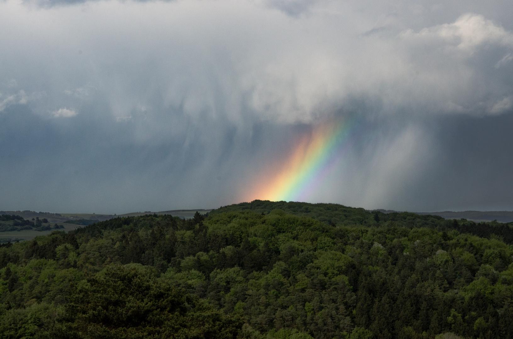 Regen und Regenbogen gehören wohl zusammen