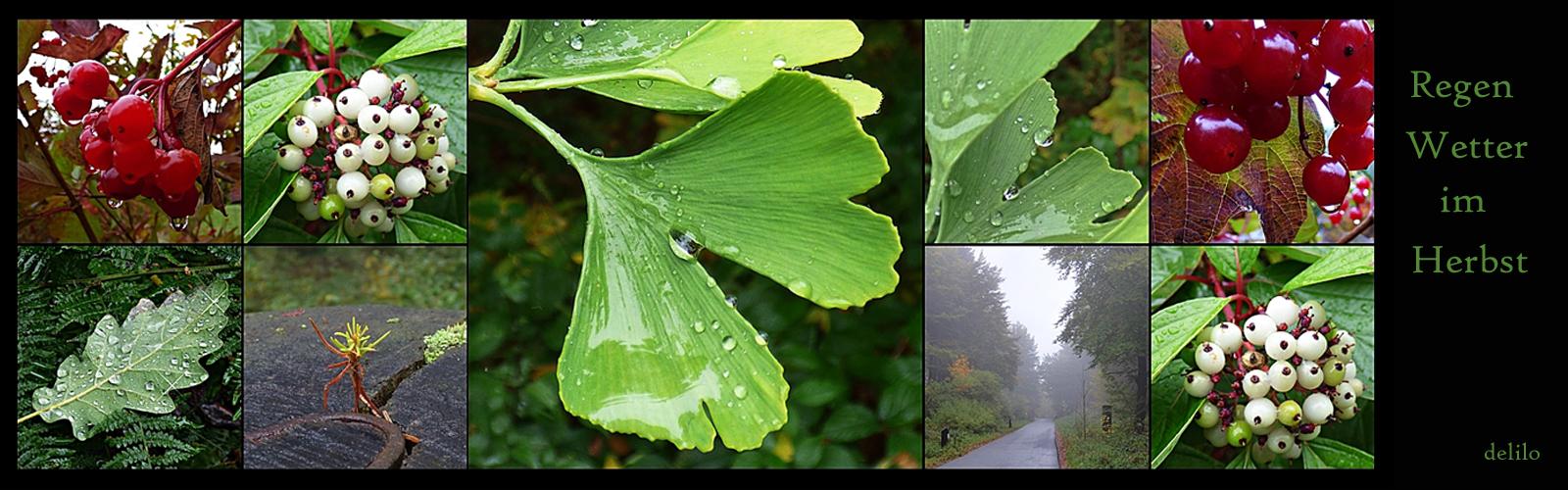 Regen-Wetter im Herbst