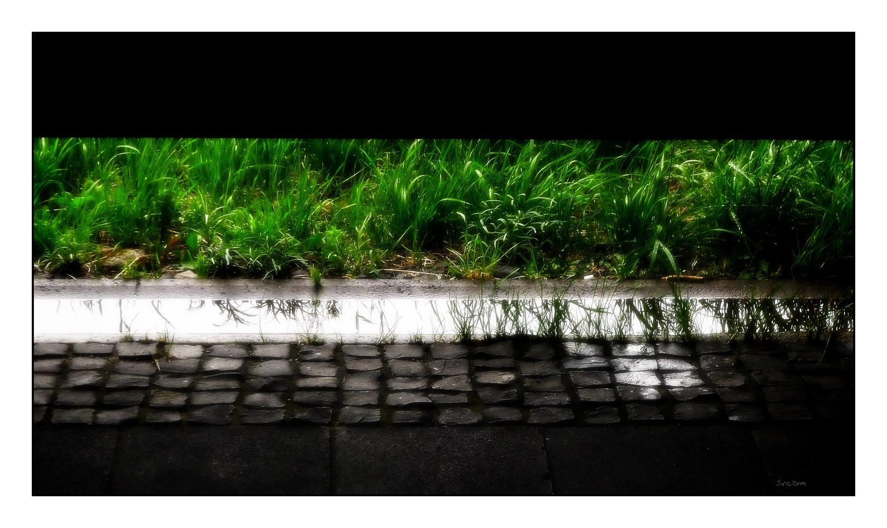 regen.bild