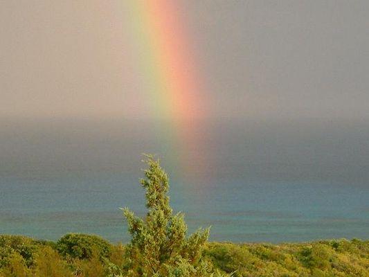 Regenbogen auf den Bermudas