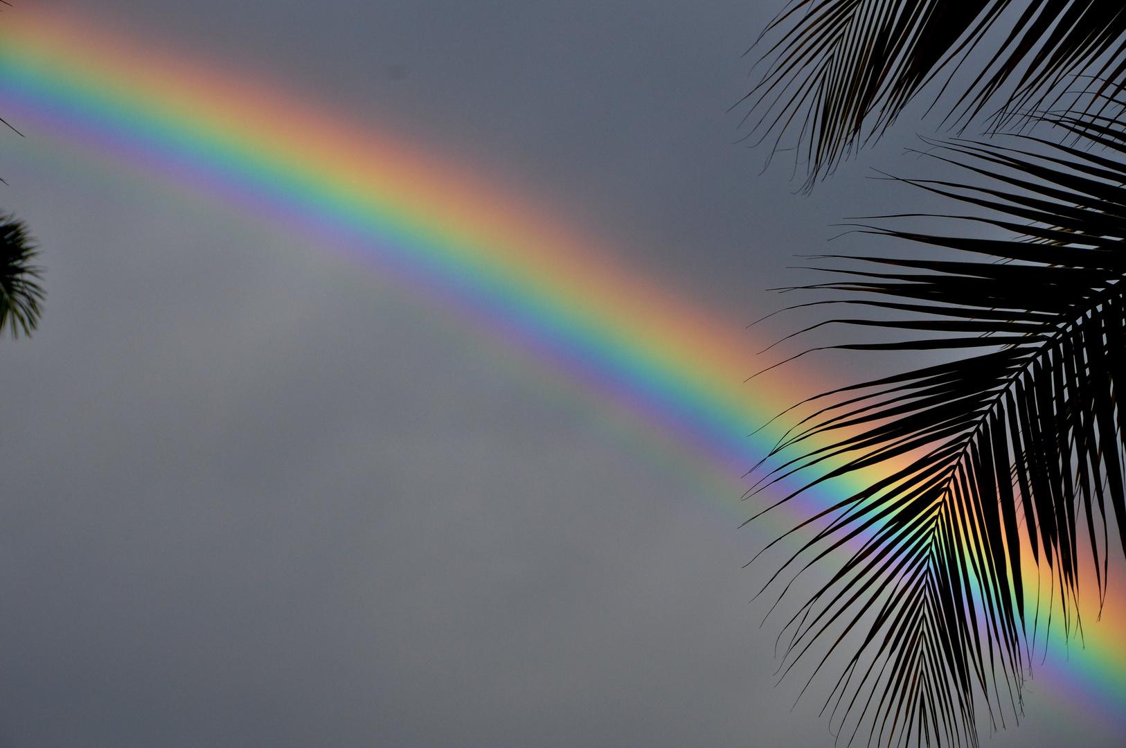 Regenbogen auf Jamaica