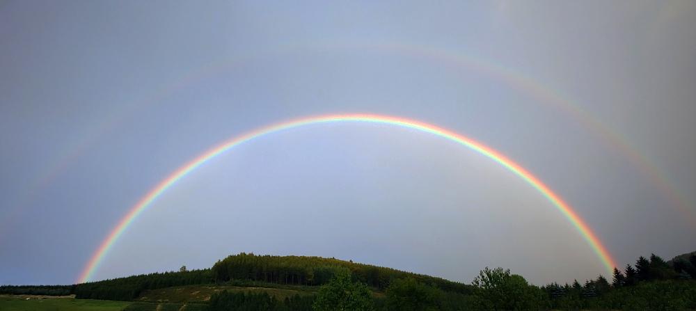 Regenbogen gestern Abend