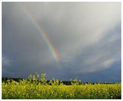 Regenbogen II - fast vorbei