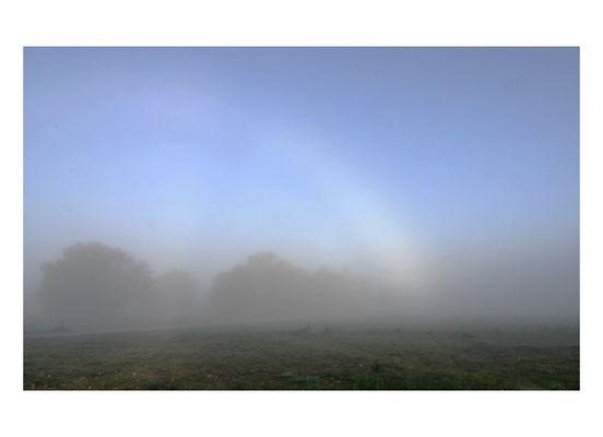 Regenbogen im Nebel