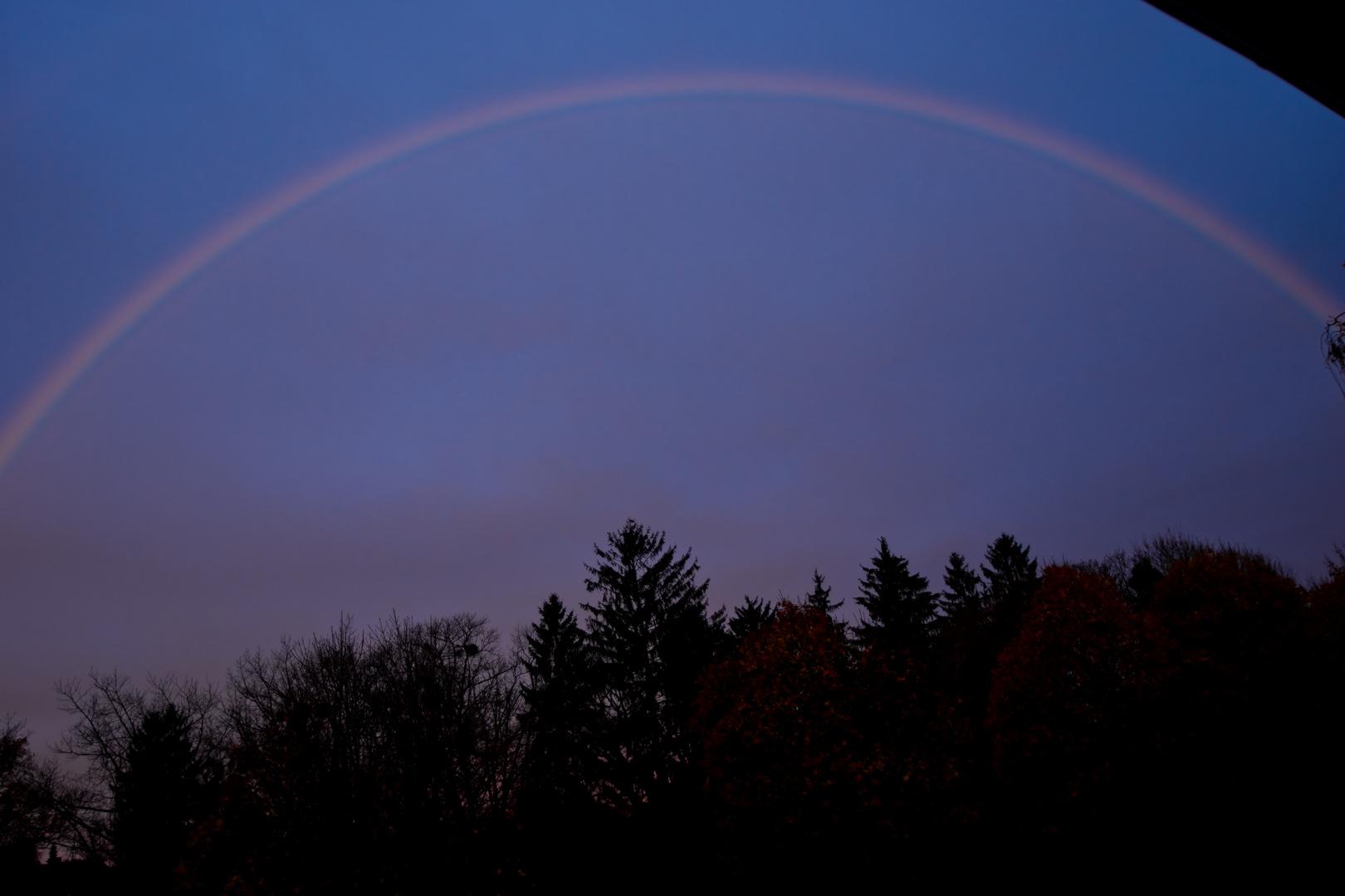 Regenbogen in Dammerstock