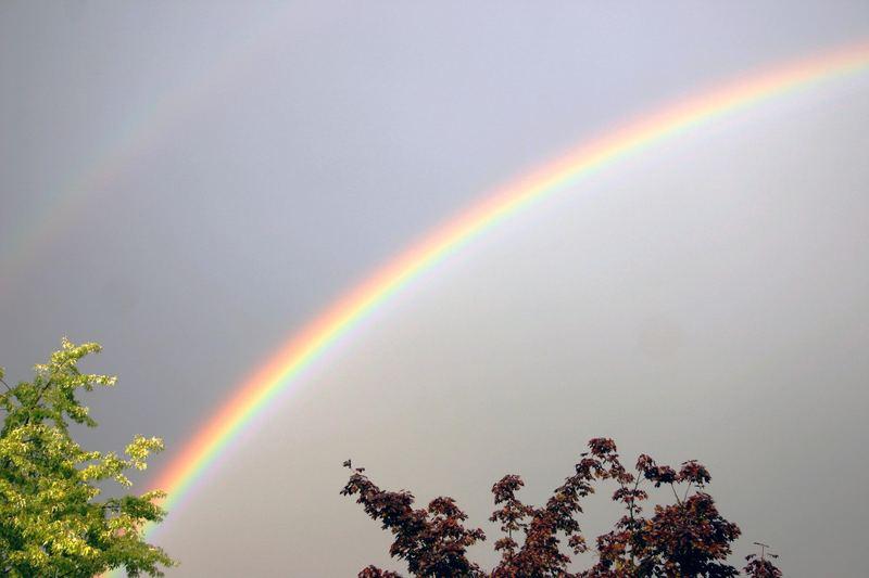 Regenbogen mal 2