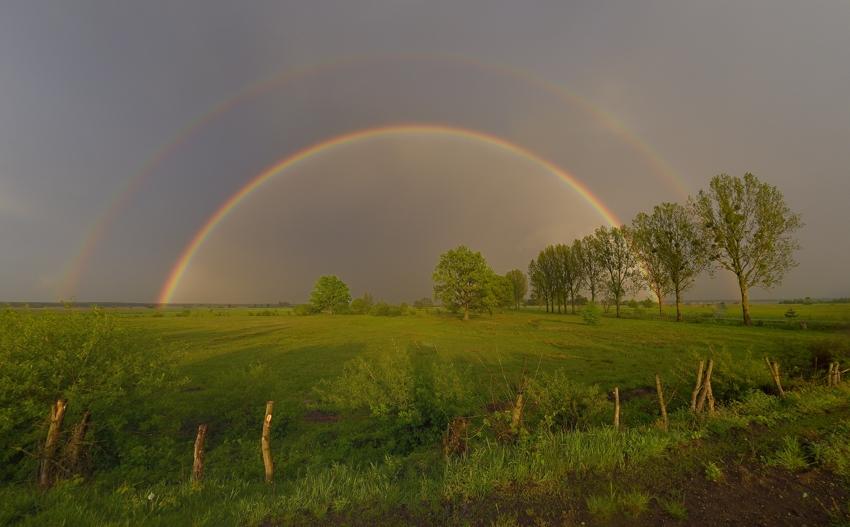 Regenbogen über Biebrza Nationalpark