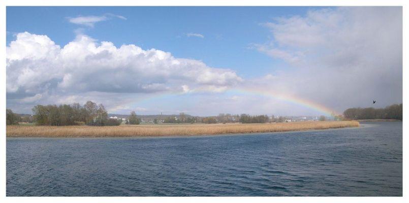 Regenbogen über dem Seerhein bei Gottlieben