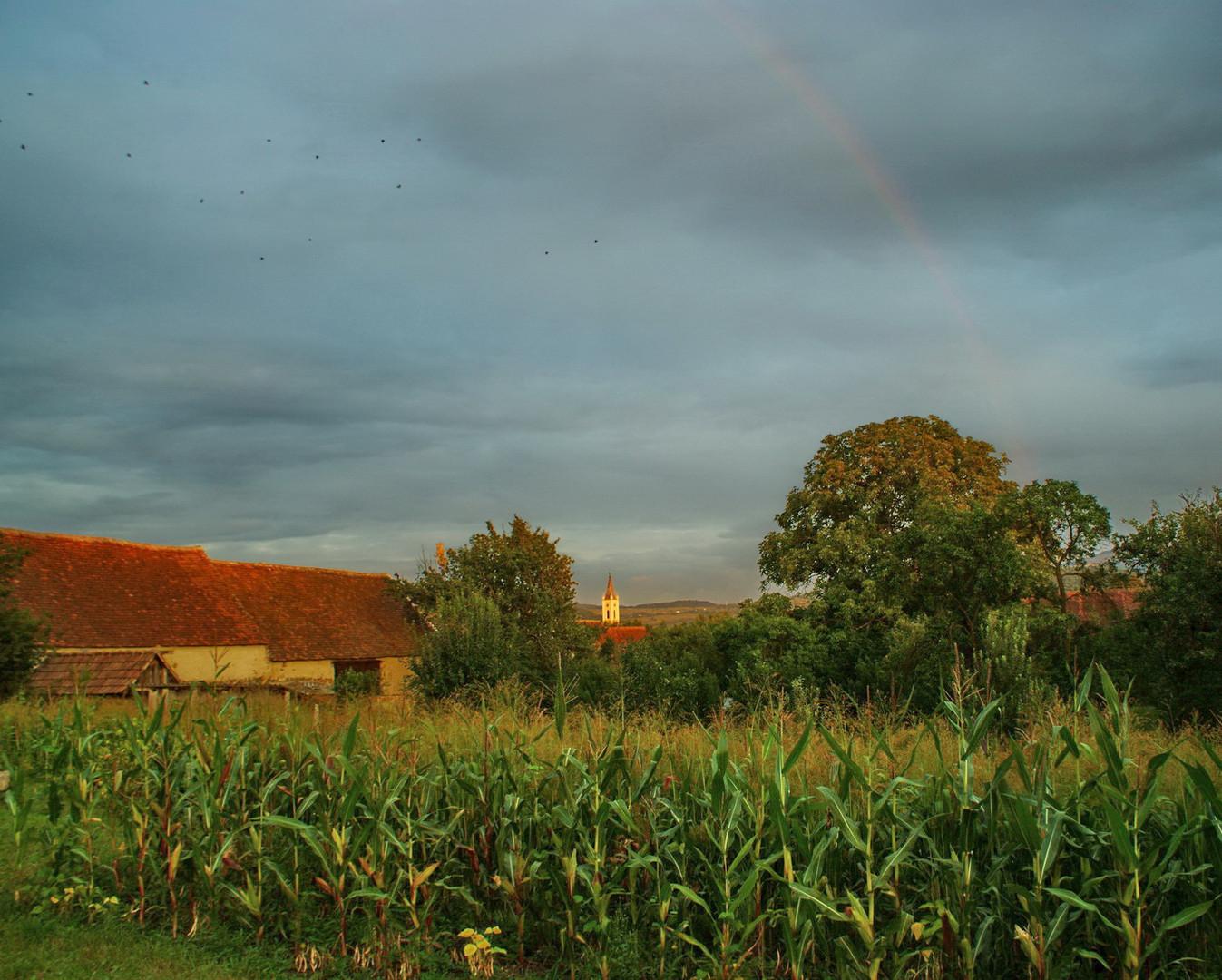 Regenbogen über Großpold- Apoldu des Sus