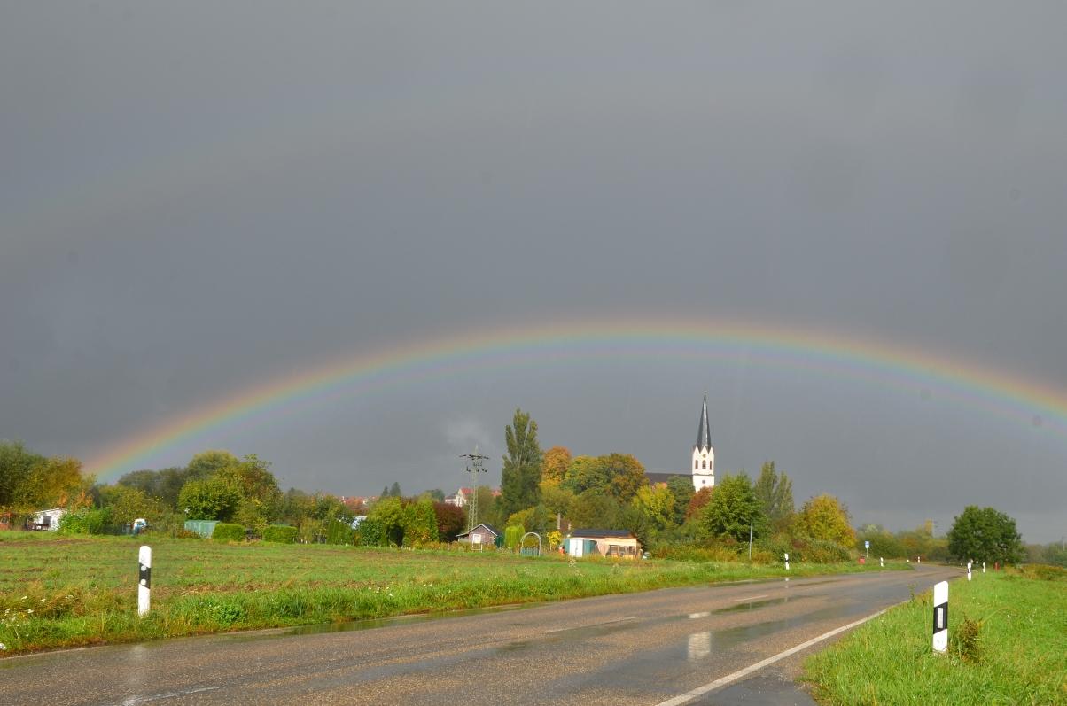 Regenbogen über Jockgrim