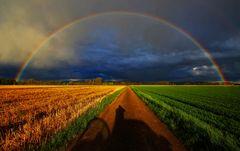 Regenbogenland überarbeitet