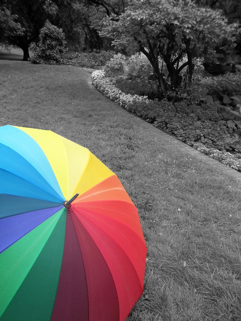 Regenbogenschirm 2