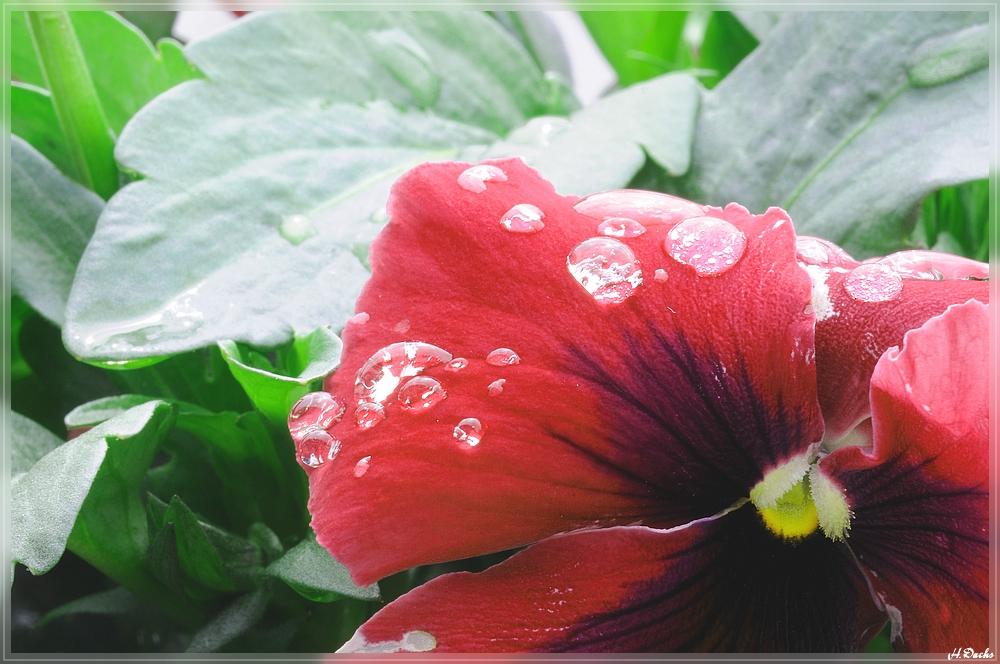 Regenpause..........