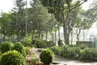 Regenpause