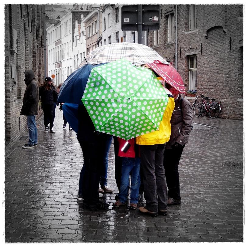 RegenPilz