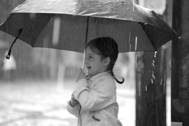 Regenschaer