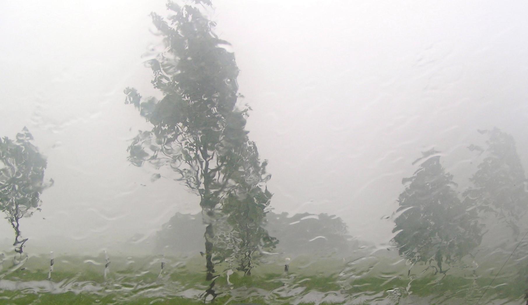 Regenschauer durch Autoscheibe betrachtet