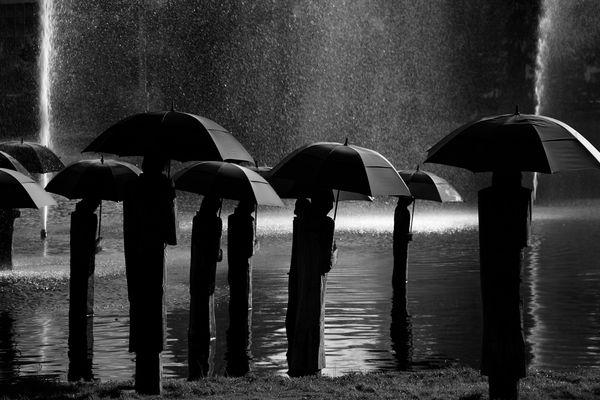 Regenschirmläufer von Davos