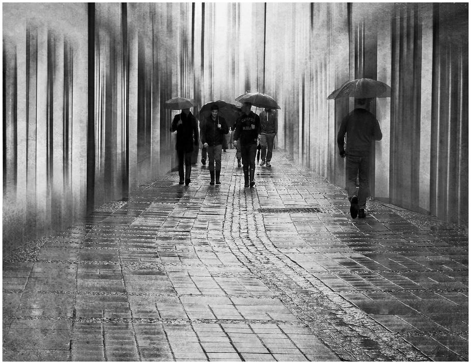 Regentag...