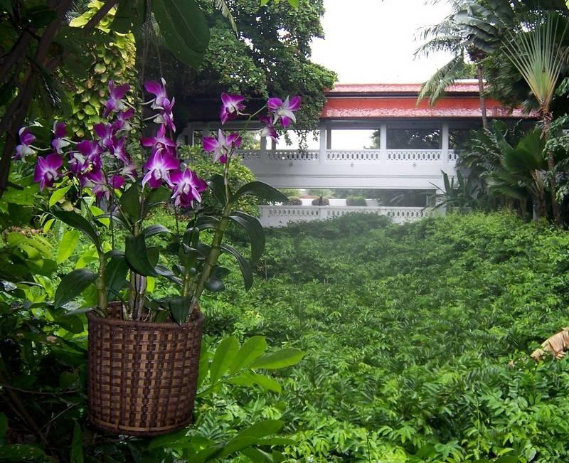 Regenwald im Hotel