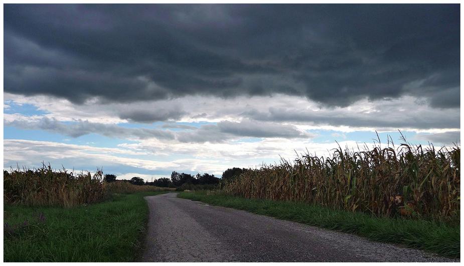 Regenwolken über Oslip