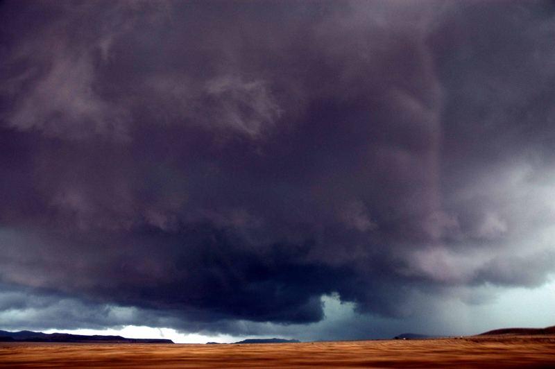 Regenzeit in Südafrikas Karoo