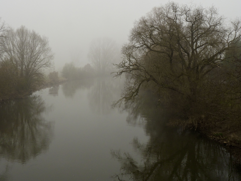 Regnitz im Nebel