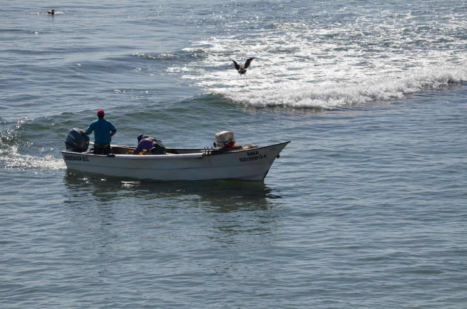 Regresando de la pesca