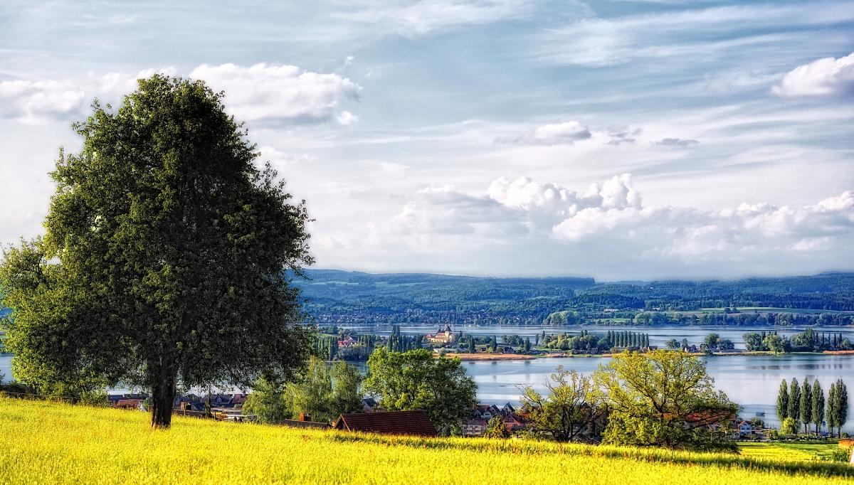 Reichenau und Gnadensee
