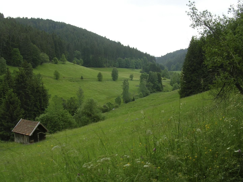 Reichenbacher Tal