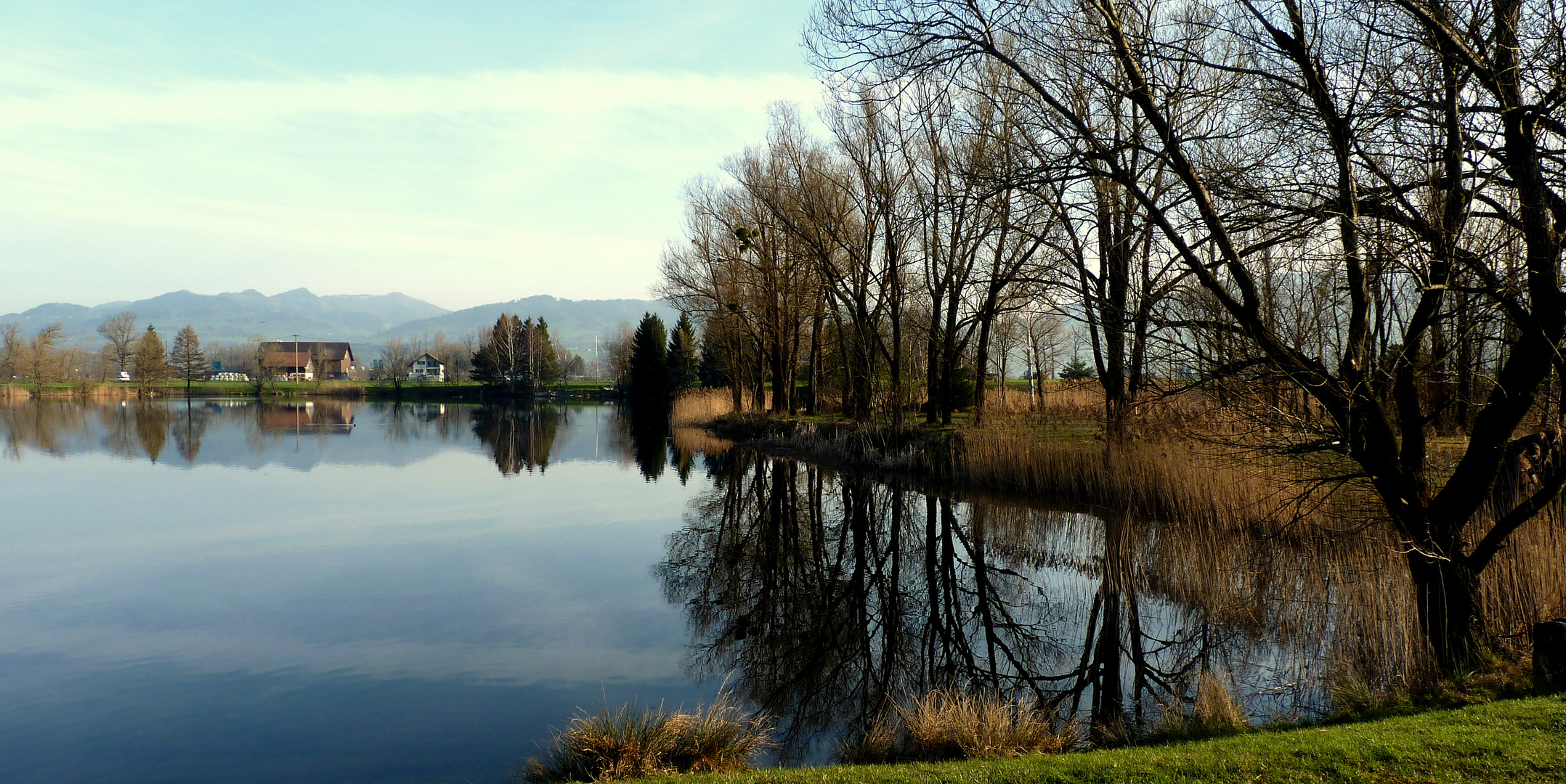 Reichenburg = Der Teich / L'etang / El estanque...05